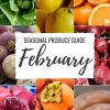 "Produce Guide ""Whats in Season FEBRUARY"" is a collection of best HEALTHY recipes featuring seasonal fruits and veggies for the month February. #seasonal #winter #fruit #vegetables #guide #healthy #produce #food #february #recipes 