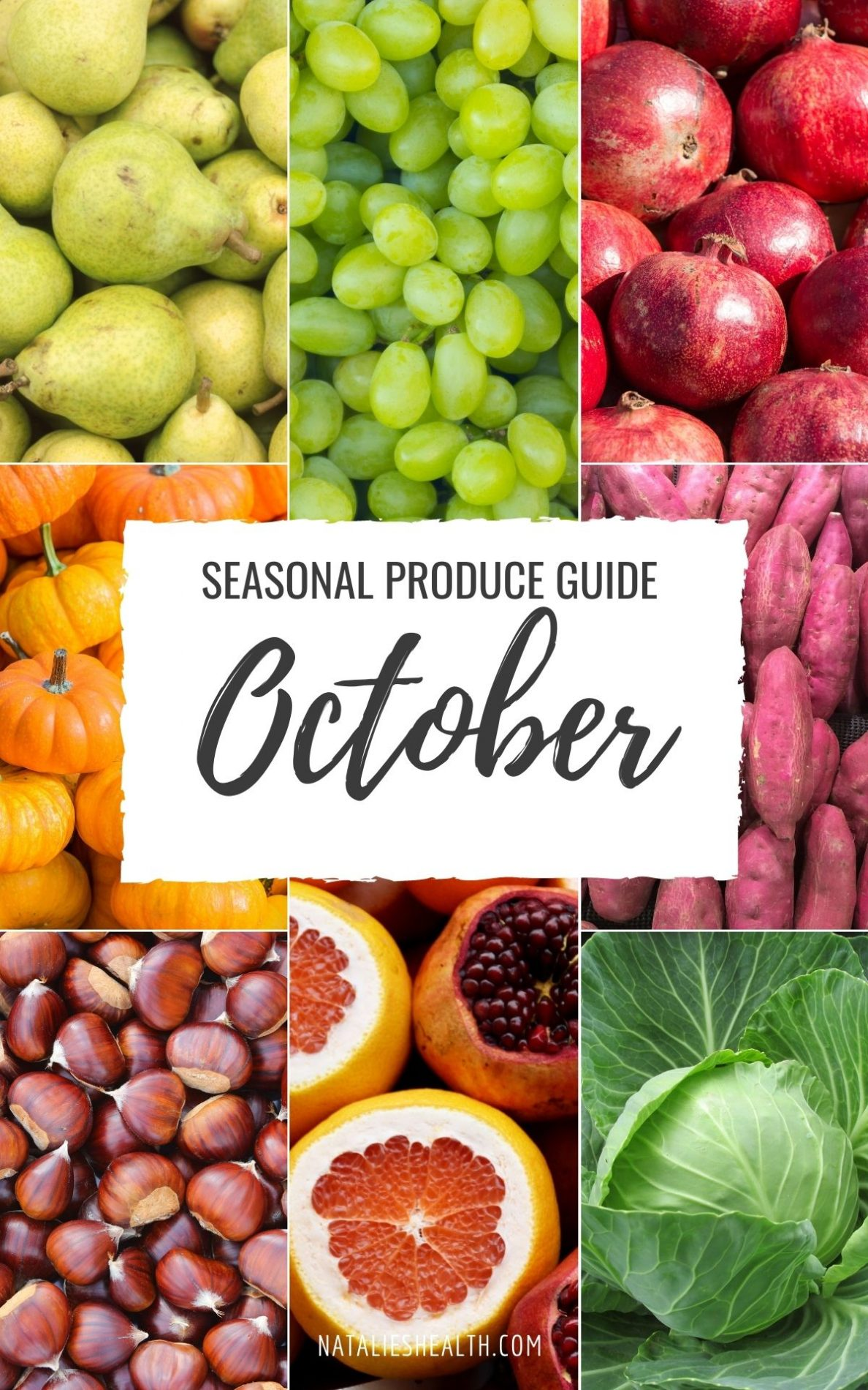 Seasonal Produce Guide What's in Season OCTOBER featured image
