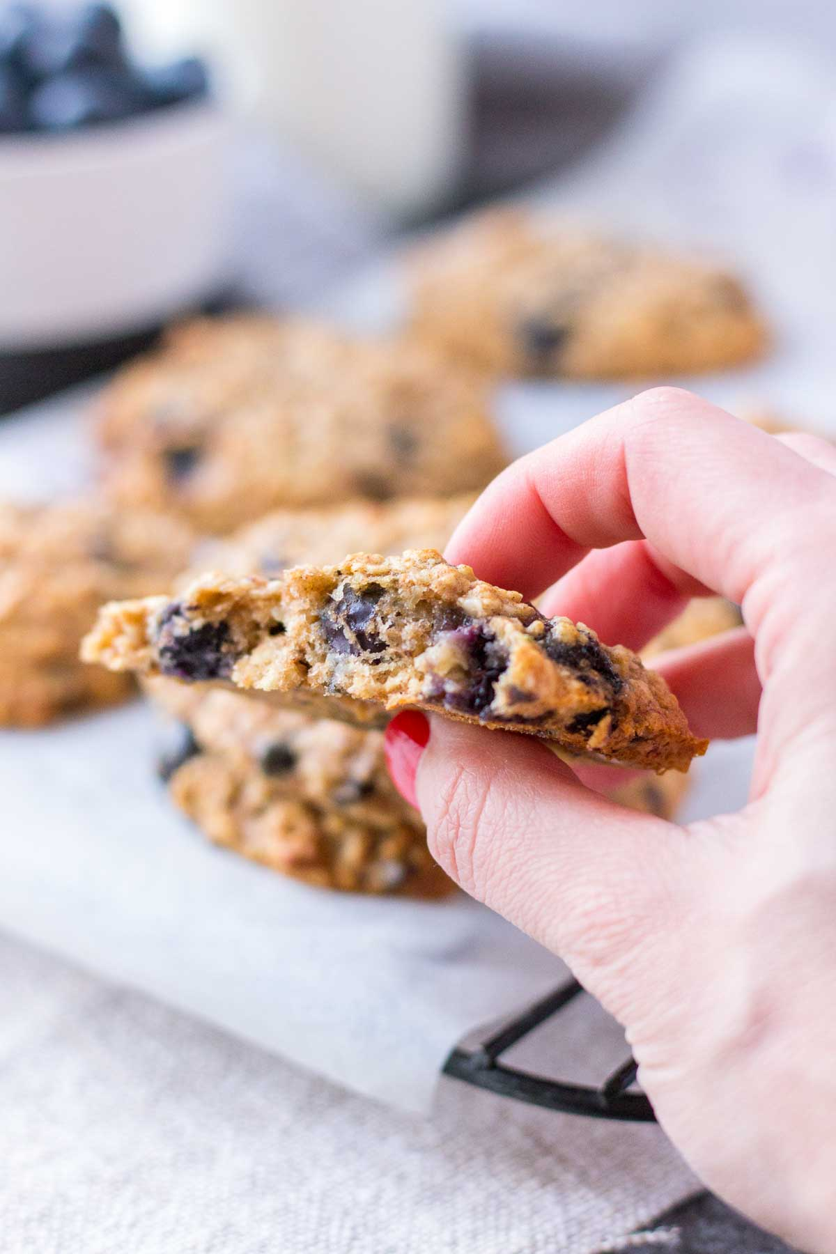 Hand holding blueberry cookie